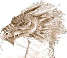 Quick dragon head sketch by BobbyDazzl3r