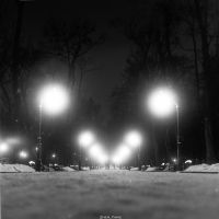 The Park by Zhen-Yang