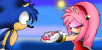 Sonic and Amy (Sonic X) by xXLoveHedgehogXx