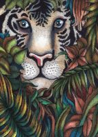 Tiger by Janelle-Dimmett