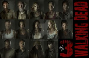The Walking Dead Season 3 by rclarkjnr