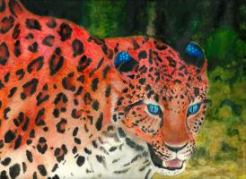 Reticulated Panther by solarisa