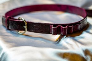 Bandolier Belt 1 by Force4Photos