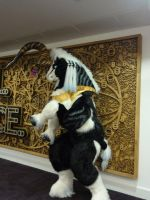 Ixion fursuit by StarlightGlow