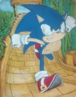 Run Sonic !! by Oh-Life