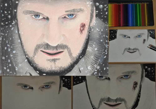 Liam Neeson - From Start to Finish by nobii