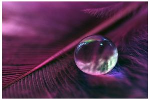 A drop of love by Serend1pity