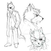 How I imagined Wolf initially by nejinoki