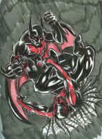 S A D 15 Batman VS  Spiderman by chachaman