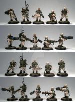 Squad 409, Imperial Guard Veterans - 1st 5 models by Elmo9141