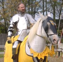 Yellow Knight 1 by akirastock