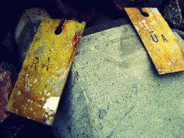 Railroad Tags by Autopsyh