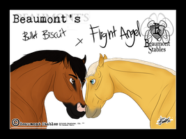 Angel x BS Bullet by Baringa-of-the-Wind