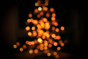 Christmas is Near by Ana-D