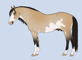 Horse adoptable for 150 points by BH-Adoptables