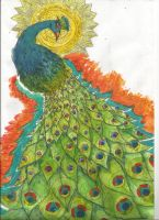 Nature Peacock by SabastionLover
