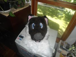 Siamese Cat fursuit head 1 by aquaheartthecat