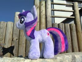 Twilight sideview by Caleighs-World