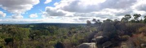 John Forrest National Park Panorama by mattboggs