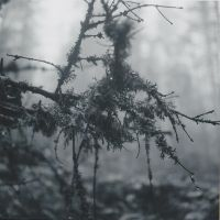 Misty mountains II by RoninCZ