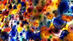 Chihuly Glass Flowers in the Bellagio by andromeda
