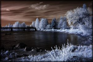 Infrared 9 by DeviantPunisher