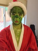 Unenthused Grinch by Insaneymaney