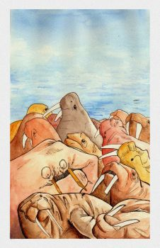 I am the walrus by Clutterbuck