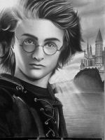 Harry Potter by rosene547