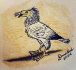 Egyptian Vulture by Donnietu