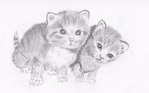 Two little kittens by Robiutadraguta2003