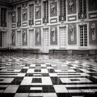 squares by rdalpes
