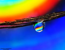 drop on peacock feather 2 by lindahabiba