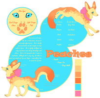 Peaches Reference Sheet by iRaynebow