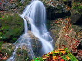 Autumn at the Falls by lica20