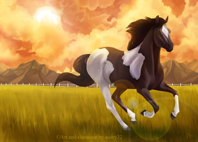 Skies on fire by audry22