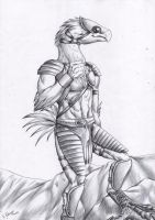 Commission - Anthro Chocobo - BW by FuriarossaAndMimma