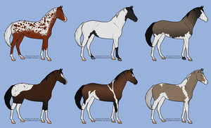 Horse Adopt Batch 1 [CLOSED] by KCNM45875