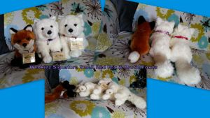 Webkinz Signature Small Red Fox and Arctic Foxes by Vesperwolfy87