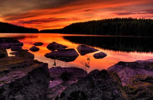 Holiday in Finland by shalomsalam