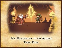 Its dangerous to go alone...take This! by whittingtonrhett
