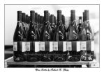 Wine Bottles by richardxthripp