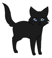 Nightpaw of MoonClan by Nightyblaze