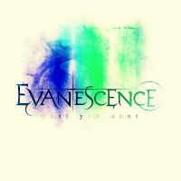 Evanescence What You Want 2 by bubblenubbins
