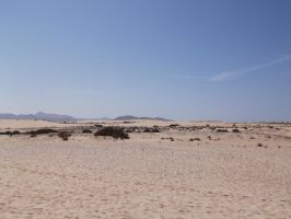 Desert Background Two by SilverNight1079