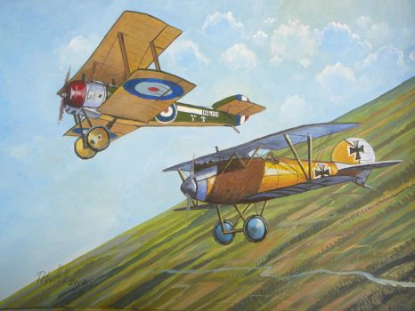 Albatros versus Sopwith Pup by hill9868
