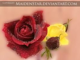 Beauty Crystallized by MaidenStar