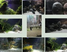 Underwater Backgrounds 4 by Tasastock