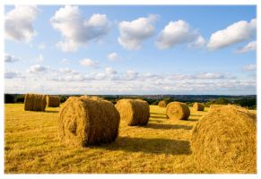 The Haystacks by Sato-photography