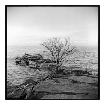 2017-146 High water at Webster Park by pearwood
